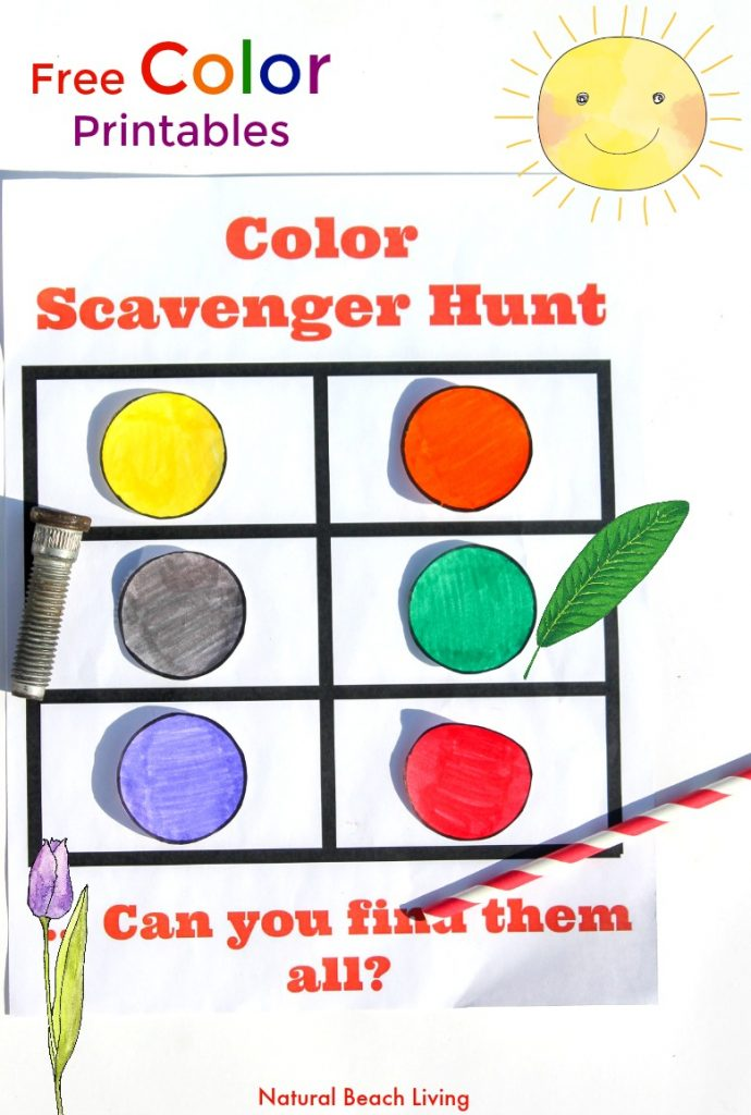 photo relating to Toddler Learning Activities Printable Free named Colour Scavenger Hunt for Preschoolers and Infants - Natural and organic
