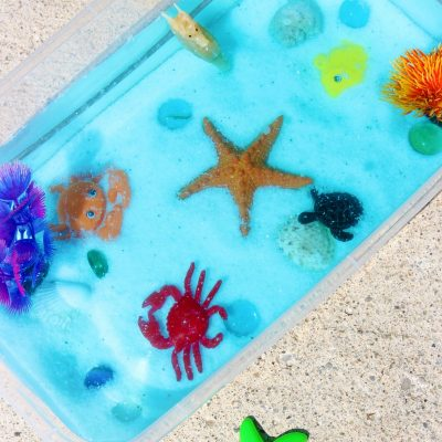 Ocean Sensory Bin – Easy Ocean Activities for Toddlers and Preschoolers