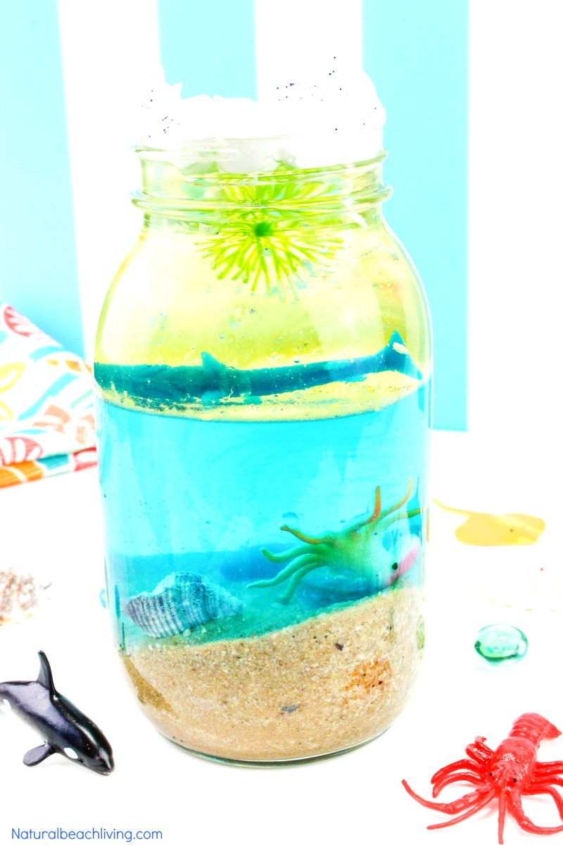 Ocean Science for Kids – Easy Ocean Life Experiment Kids Love