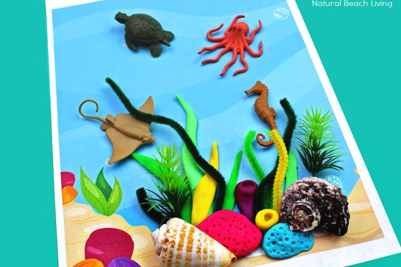 Coral Reef Activities For Preschoolers And Kindergarten Natural