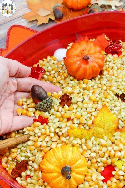 Fall Sensory Bin for Toddlers and Preschoolers