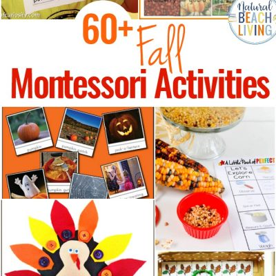 60+ Montessori Activities for Fall – Montessori Fall Themes Free Printable