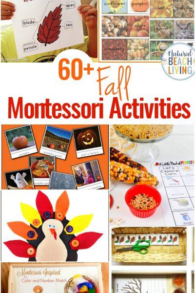 60+ Montessori Activities for Fall – Montessori Fall Themes Free Printable