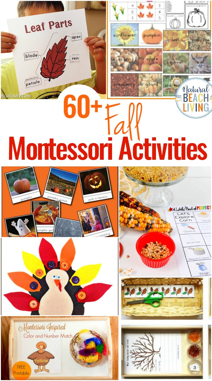 image about Fall Printable Activities titled 60+ Montessori Functions for Tumble - Montessori Tumble Themes