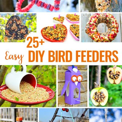 25 Homemade Bird Feeders You'll Want to Make Today