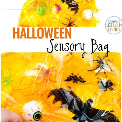 Halloween Sensory Bag – Sensory Activities for Kids