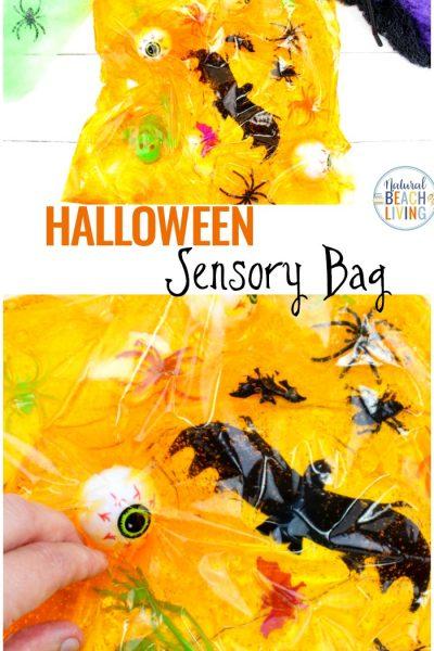 Halloween Sensory Bag – Sensory Activities for Kids