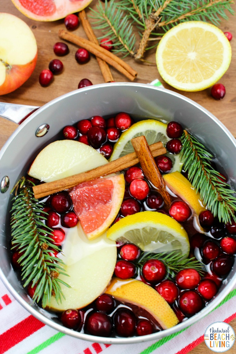 Christmas Potpourri – DIY Homemade Potpourri Recipe for the Holidays