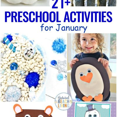 21+ January Preschool Themes with Lesson Plans and Activities