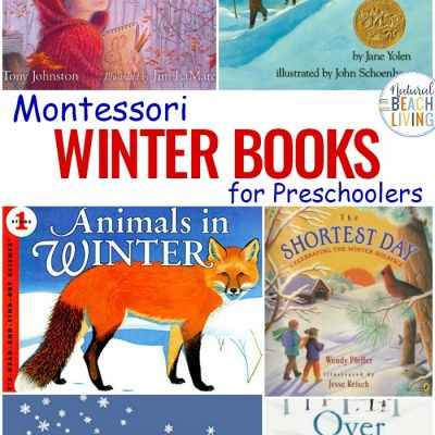 25+ Montessori Books for Winter – Best Winter Books for Preschoolers