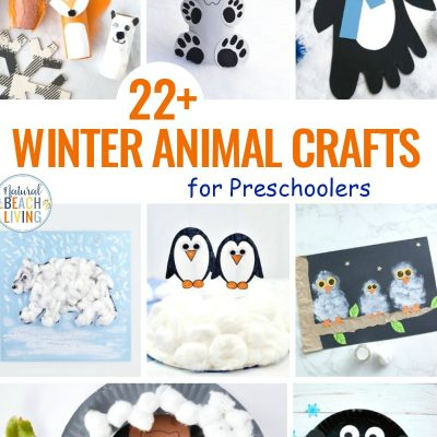 22+ Winter Animal Crafts for Preschoolers