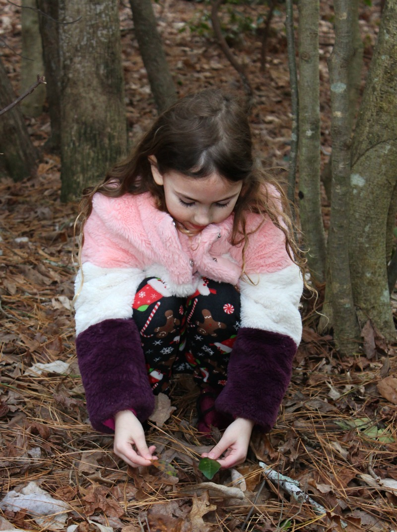 Winter Nature Activities for Preschoolers with Free Printable, Set up a Science table or even a STEM Tray, this is perfect. You can also use this free printable for a Winter Tinker Tray. You and your child can enjoy nature walks, nature books and Letter N nature activities