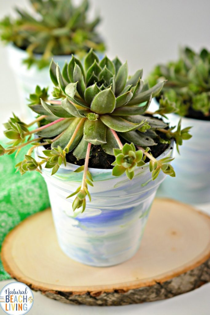 These Marbled Pots are AMAZING and perfect for Garden Art Projects for Kids. In the spring everyone should enjoy garden crafts for kids and outside activities. These tie dye flower pots are fun Earth Day Garden Activities and Great Gardening Activities for Preschoolers and Kindergarten, Planting Crafts for Kids