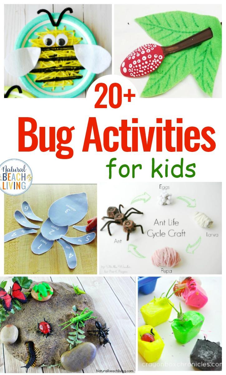 25 Bug Activities for Preschool