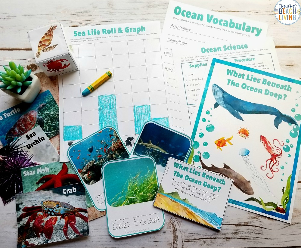 Ocean Science Activities are a perfect way to spend time learning during the summer or for a fun ocean theme.Here is fantastic Under the Sea Activities for Kids. Including sea shell sorting activities, ocean zones for kids, Science experiments for Kids and Ocean Activities for Kids, An AMAZING Ocean Unit Study