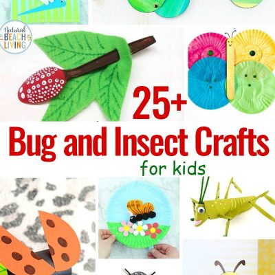 25 Bug and Insect Crafts for Kids