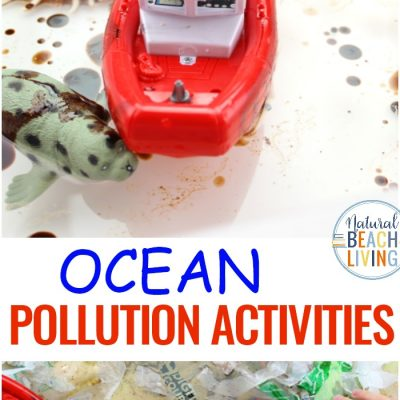 Ocean Pollution Activities and Plastic Pollution Activities