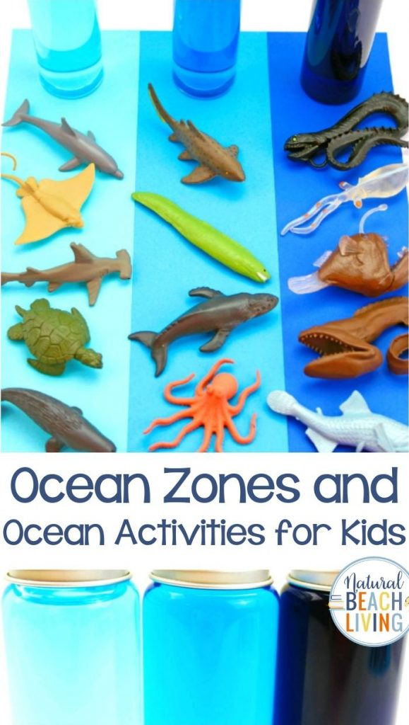From the cool Ocean Zones for Kids to the Ocean Activities for Preschoolers these fun hands on activities can be part of an amazing ocean unit study. These Ocean activities for preschoolers in science are fun under the sea activities for preschool Ocean Sensory and Ocean Science for Preschoolers