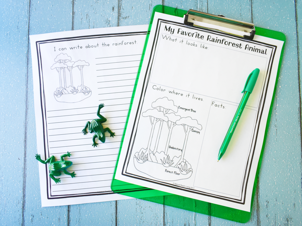 The Best Rainforest Activities for Kids. Rainforest Lesson Plans printables are perfect for preschool and Kindergarten to learn about rainforest animals and the habitats of the rainforest. Your kids will learn while engaging with their imagination and creativity as well. These Rainforest Lesson Plans are perfect for hands-on learning. Rainforest Printables are so much fun
