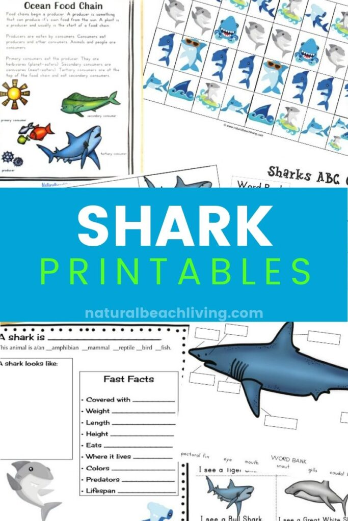 The Best Shark Printable Activities for Kids, Get ready for Shark Week with a Shark Unit Study and Shark Lesson Plans, Shark Week Ideas, Alphabet Activities, Shark Facts and Information Printables included with Shark printables preschool and Writing Prompts