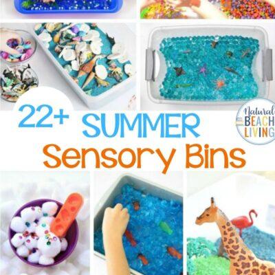 Summer Sensory Bins – The Best Sensory Activities for Summer