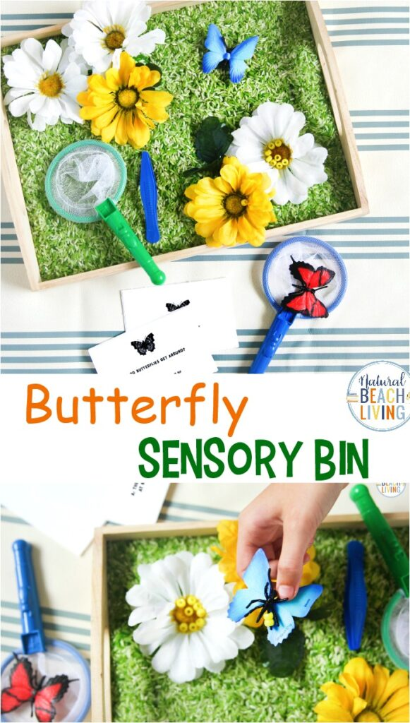 Your Preschoolers will enjoy this lovely Butterfly Sensory Bin and Butterfly Habitat Activity. It is easy to put together and perfect for themed learning with hands on activities. Try Butterfly Life Cycle Activities and Butterfly Life Cycle Craft for any Butterfly Preschool. You'll get the best Butterfly Activities and Butterfly Printables here.