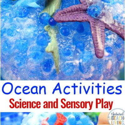 Ocean Activities for Preschoolers – Ocean Science Experiments