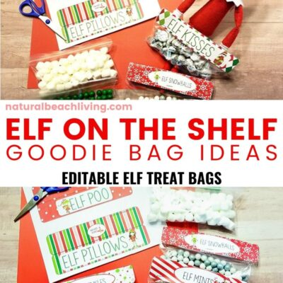 Elf on the Shelf Goodie Bag Ideas with Free Printables