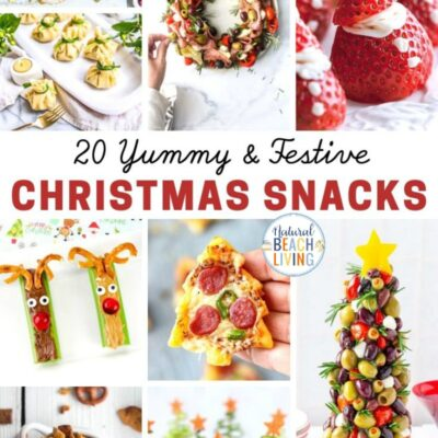 22+ Healthy Christmas Snacks Kids and Adults Love