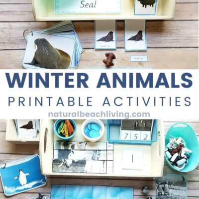 Winter Animals Preschool Theme Activities