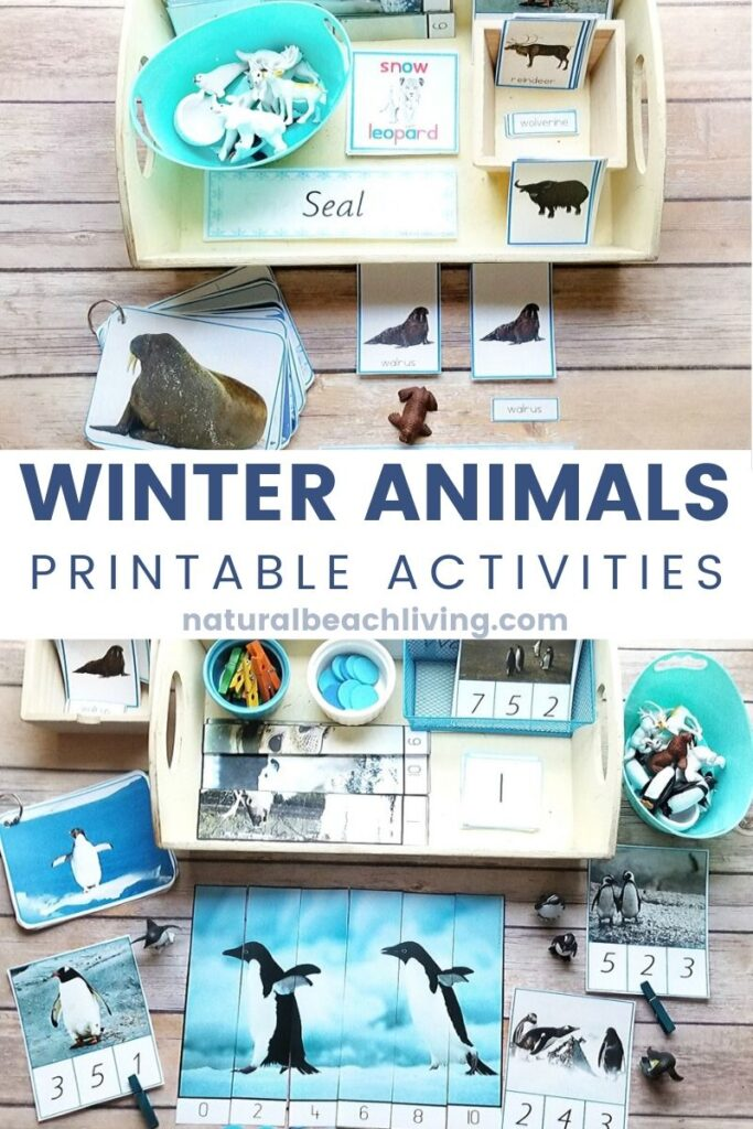 Don't miss out on these Winter Animals Preschool Theme Unit Study! It's a great way to learn all using hands on activities and winter animals during the cold winter season. Winter Animals Preschool Theme, Montessori Winter Animals Printables