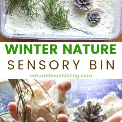 Winter Nature Sensory Bin with Snow Cloud Dough