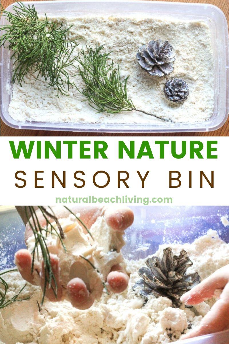 Winter Nature Sensory Bin with Snow Cloud Dough