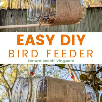Mason Jar Bird Feeder – Easy DIY Bird Feeder