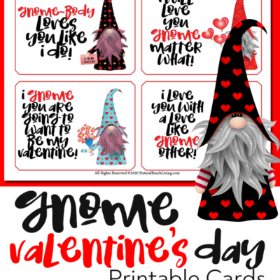Free Gnome Valentine Cards Kids and Adults Love