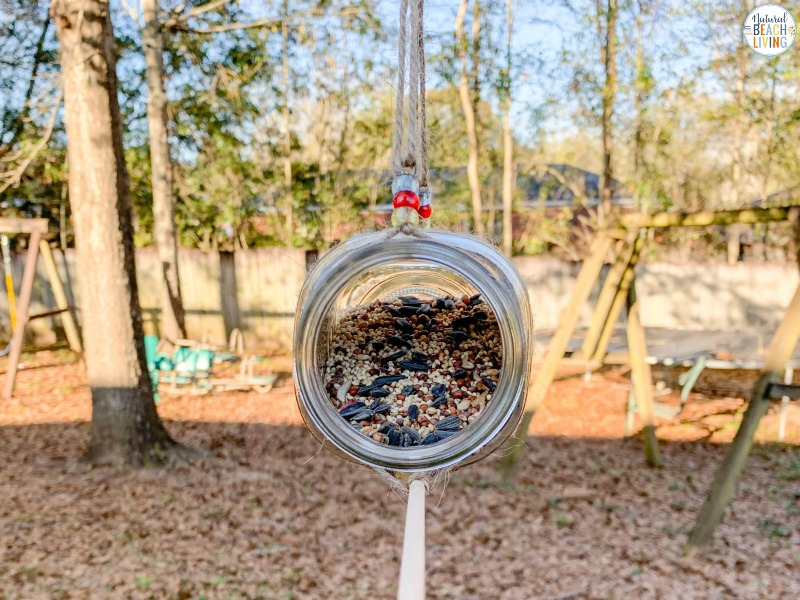This Mason Jar Bird Feeder is a great idea for a simple and fun craft that is perfect for all ages! Whether you are looking for an activity for Earth Day, spring, summer, fall or winter homemade bird feeders are perfect for learning about birds and helping your feathered friends find food. We have THE BEST BIRD SEED ORNAMENTS and HOMEMADE BIRD FEEDERS Here