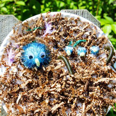 Paper Plate Birds Nest Craft for Preschoolers