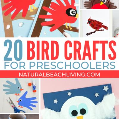 25+ Bird Preschool Crafts – Fun and Easy Crafts for Preschoolers