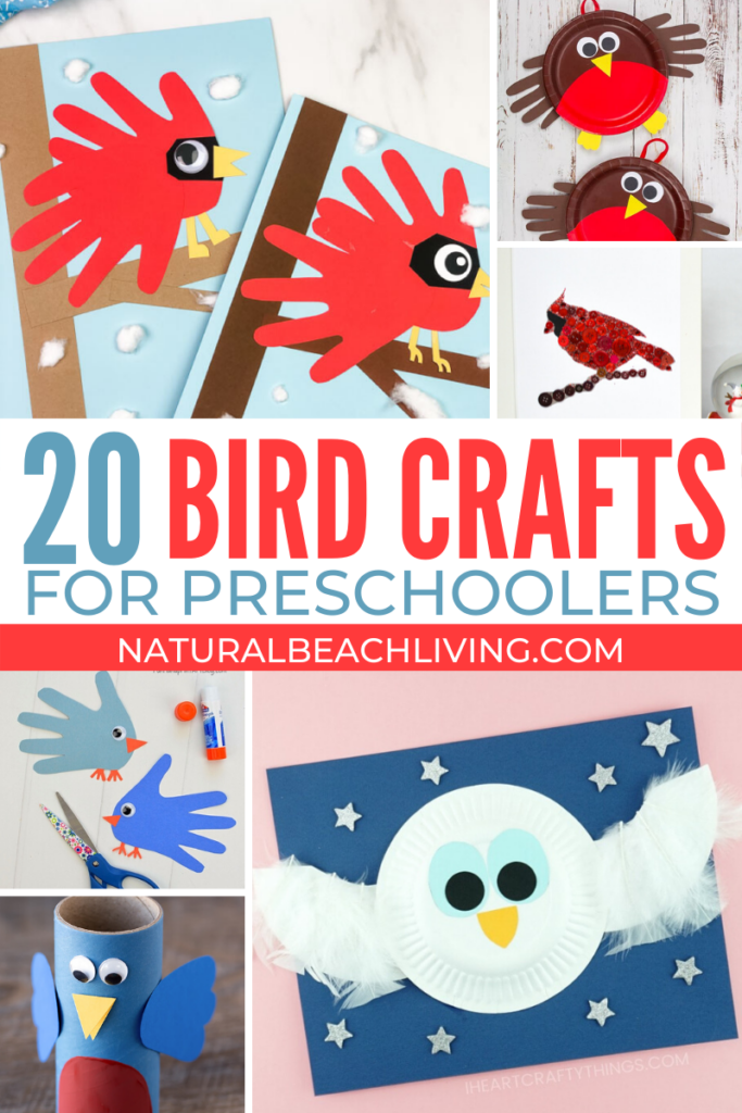 The Best Bird Activities for Preschoolers, All the best ideas for a Preschool Bird Theme with Lesson Plans, Hands on activities, Homemade Bird Feeders and Bird Science Activities for Preschoolers, Bird Crafts and Bird Activities for kids