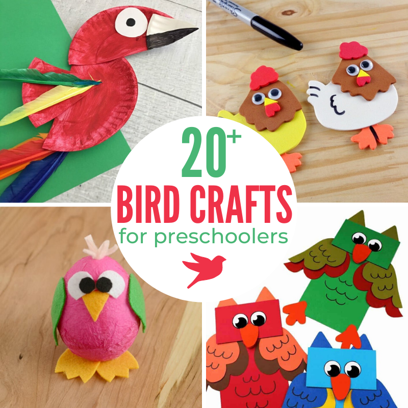 These Bird Preschool Crafts are fun at any time of year. From cardinals and robins to colorful peacocks and parrots crafts, there are so many great Bird Crafts for Preschoolers here. These crafts are a great addition to your preschool theme activities and fun Bird Activities for Preschoolers