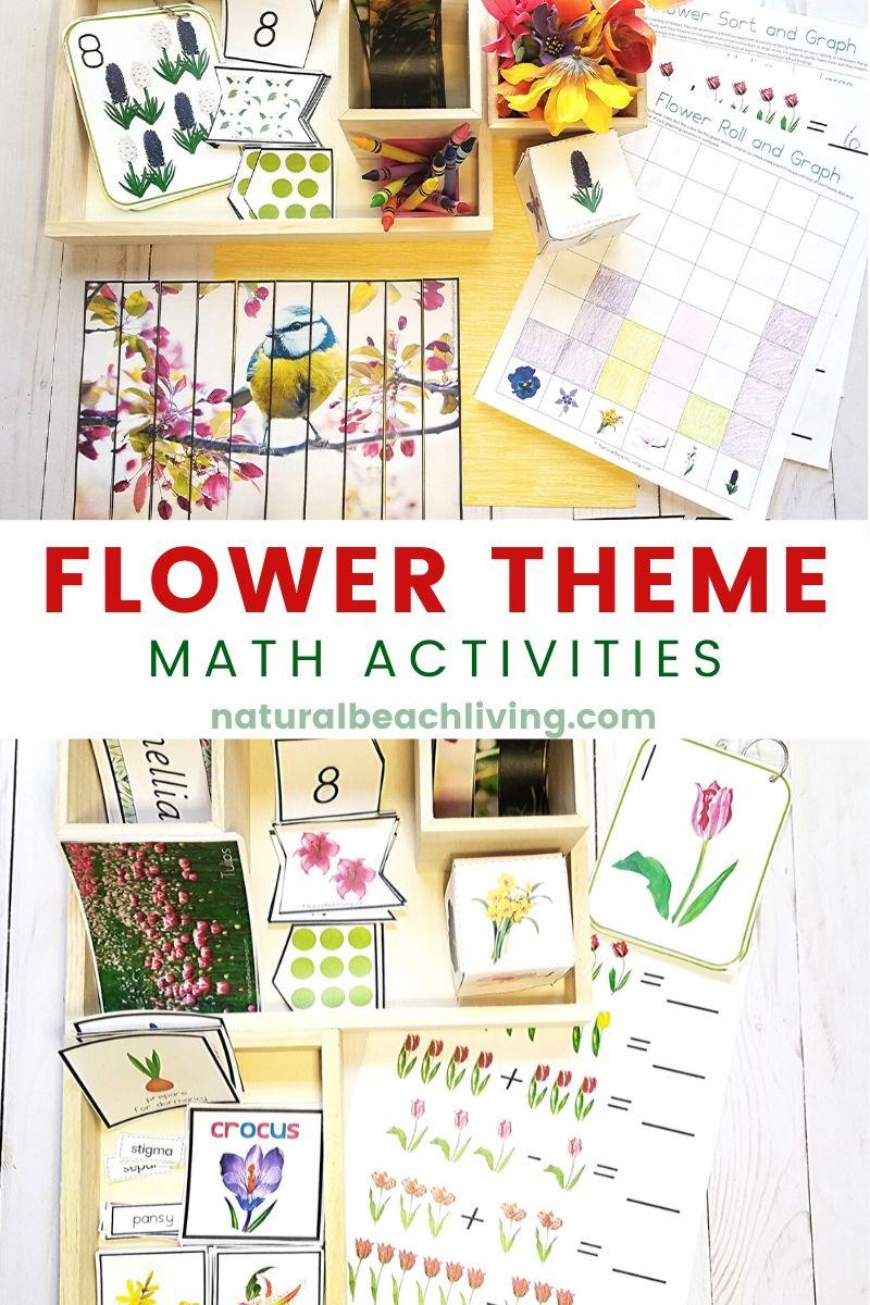 Flower Theme Math Activities for Preschool and Kindergarten