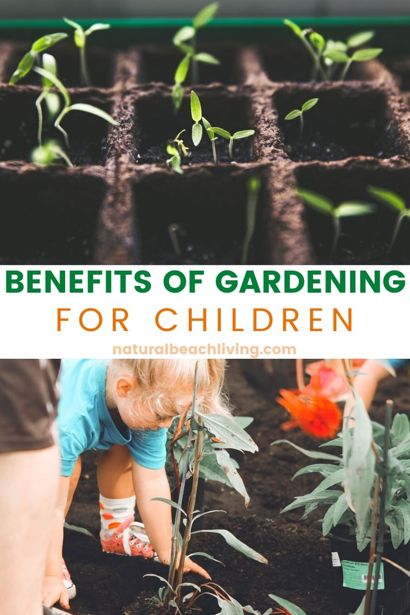 8+ Things Your Child Can Learn in the Garden
