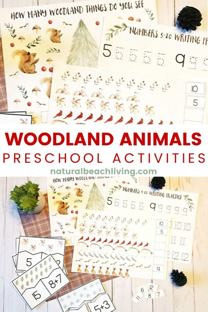 These Woodland Animals Math Activities are great for Preschool math as well as kindergarten too. If you are looking for Montessori Math, Forest Theme Math Activities for Preschoolers and Math Activities for Kindergarten you'll find lots of Woodland Animals Printables and Winter Preschool Math Here.