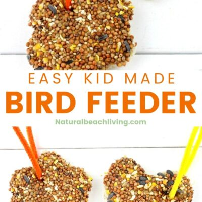 Easy Peanut Butter Bird Treats Kids Can Make