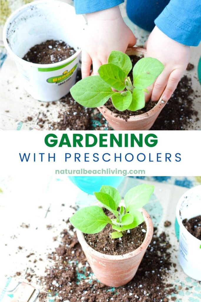 Preschoolers are at such a fun age for showing how to plant seeds and introducing plants and flowers into your child's life. Gardening with Preschoolers and Planting Crafts are a great way to start the spring season with hands on learning and nature. Start with these Planting Activities for Preschoolers and Planting seeds crafts for preschoolers. They are Perfect!