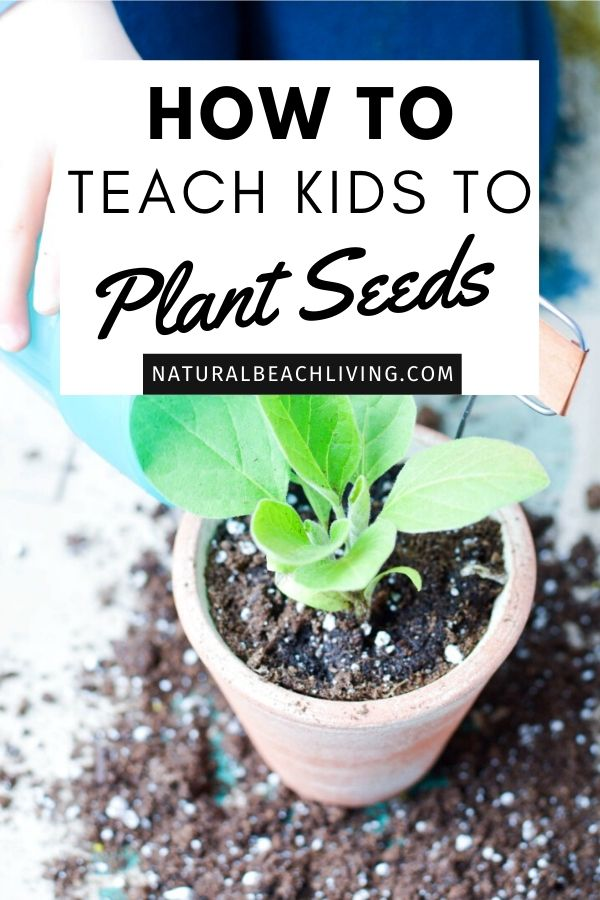Planting activities for preschoolers. These DIY Garden Markers and Planting Crafts are a fun way to play in the dirt and be creative. If you're looking for tips on how to teach kids to plant seeds and label them, don't miss out on these garden activities and tips for planting with preschoolers and Kindergarten.