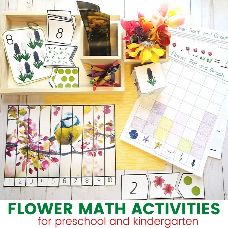 Flower Theme Math activities. Your kids will love the beautiful pictures included in these Preschool and Kindergarten Math activities. Use these preschool flower theme hands on activities for math centers, Montessori trays, or for a simple way to include a spring theme into your homeschooling.