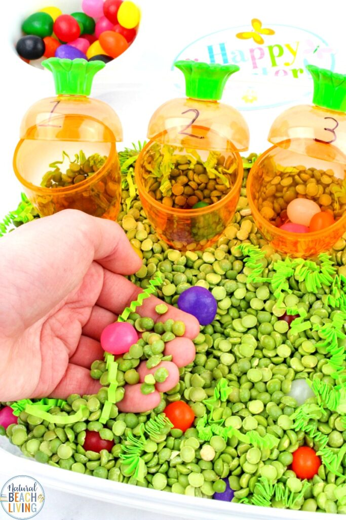 This Easter Sensory Bin is a fun way to teach your toddler and preschooler counting and exploring! This Jelly Beans Sensory Bin not only helps your child work on their counting skills but it also is a really fun Spring activity