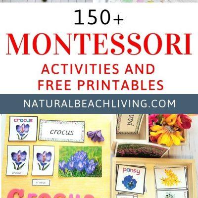 150+ Amazing Montessori Activities and Free Printables