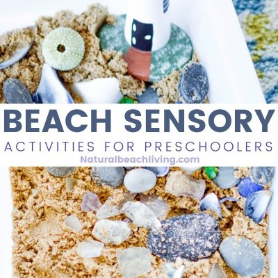 Beach Sensory Bin – Ocean Themed Sensory Activities